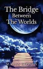 Bridge Between the Worlds