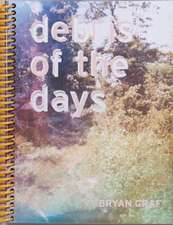 Debris of the Days