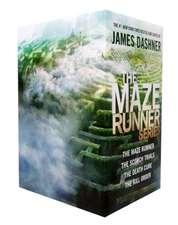 The Maze Runner Set:  The Great Easter Egg Hunt