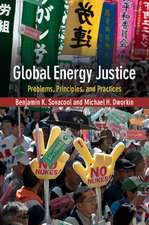 Global Energy Justice: Problems, Principles, and Practices