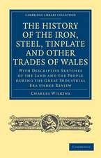 History of the Iron, Steel, Tinplate and Other Trades of Wales