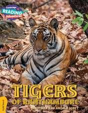 Tigers of Ranthambore Gold Band