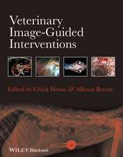 Veterinary Image–Guided Interventions