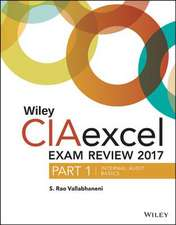 Wiley CIAexcel Exam Review 2017, Part 1