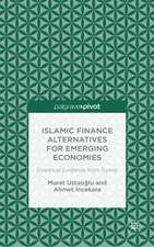 Islamic Finance Alternatives for Emerging Economies: Empirical Evidence from Turkey