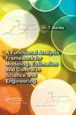 A FUNCTIONAL ANALYSIS FRAMEWORK FOR