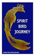 Spirit Bird Journey