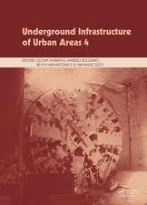 Underground Infrastructure of Urban Areas 2017