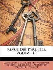 REVUE DES PYR N ES, VOLUME 19