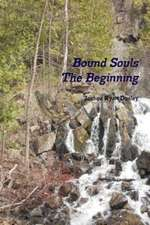 Bound Souls the Beginning
