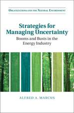 Strategies for Managing Uncertainty: Booms and Busts in the Energy Industry