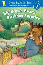 Big Brown Bear's Birthday Surprise (reader)