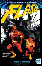 The Flash Vol. 2