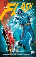 The Flash Volume 6