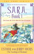 Sara Learns the Secret about the Law of Attraction:  A New Dialogue with Your Soul