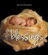 Little Blessings:  A Baby Journal