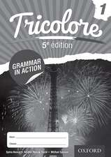 Tricolore 5e édition Grammar in Action Workbook 1 (8 pack)