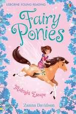Davidson, Z: Fairy Ponies