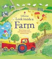 Daynes, K: Look Inside a Farm