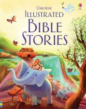 Various: Illustrated Bible Stories