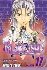 Black Cat, Vol. 17