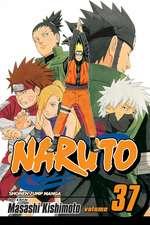 Naruto, Vol. 37: Naruto