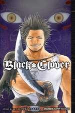 Black Clover, Vol. 6