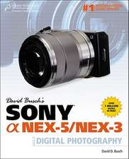 David Busch's Sony a Nex-5/Nex-3 Guide to Digital Photography:  Agile Software Project Management and Development