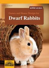 Games and House Design for Dwarf Rabbits