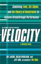 Velocity:  A Business Novel