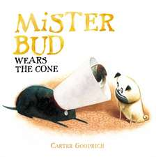 Mister Bud Wears the Cone