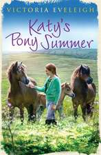 Katy's Exmoor Ponies: Katy's Pony Summer