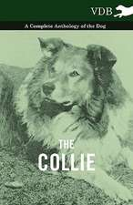 The Collie - A Complete Anthology of the Dog -