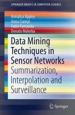 Data Mining Techniques in Sensor Networks: Summarization, Interpolation and Surveillance