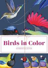 Birds in Color Notebooks