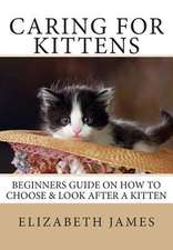 Caring for Kittens