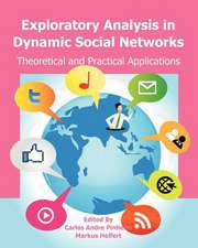 Exploratory Analysis in Dynamic Social Networks