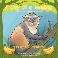 A Day of a Monkey