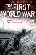 A Brief History of the First World War