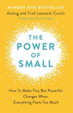 Power of Small: Making Tiny But Powerful Changes When Everything Feels Too Much