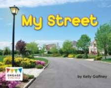 Gaffney, K: My Street