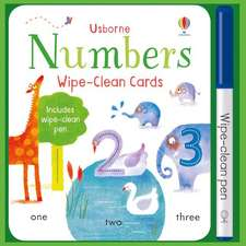 Brooks, F: Wipe-Clean Number Cards
