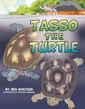 Tasso the Turtle