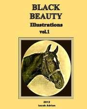 Black Beauty Illustrations