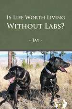 Is Life Worth Living Without Labs?