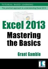 Excel 2013 Mastering the Basics