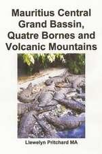 Mauritius Central Grand Bassin, Quatre Bornes and Volcanic Mountains