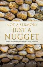 Not a Sermon:  Just a Nugget