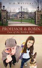 Professor & Robin