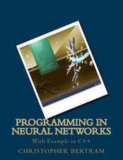Programming in Neural Networks